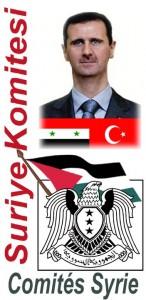SURYE KOMITESI petition (2012 08 07) TURC   2