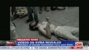 LM.NET - EN BREF False chemical attack footage (2013 09 11) ENGL