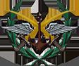 logo Etat Major AAS